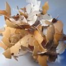 Plástico a partir de cascas de ovo: poupança nos custos de eliminação de resíduose atenção ambiental