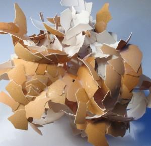 eggshell-plastic-industry-packaging
